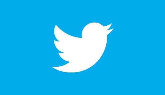 Twitter branding blue bird